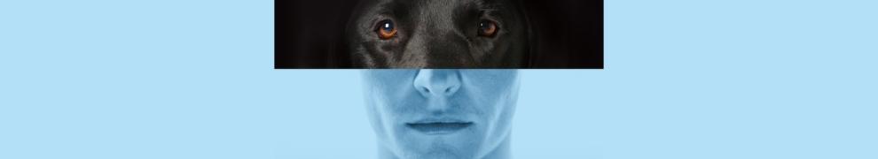 cover photo of Elijah: A Suspense Novel by Frank Redman